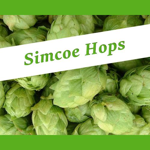 The_Hoppy_Brewer_Simcoe-Hops