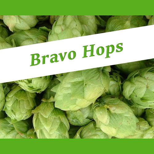 The_Hoppy_Brewer_Bravo Hops - Homebrew Supplies in Gresham