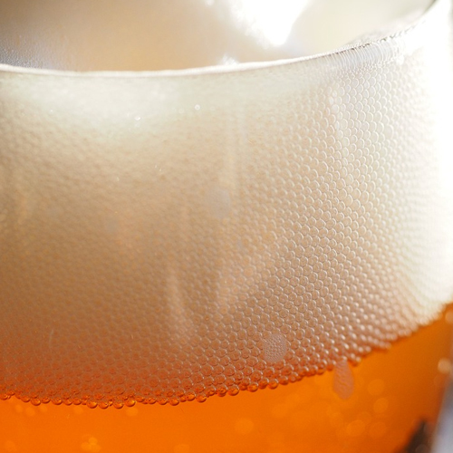 Hoppy Brewer_What's the Difference Between Nitro Beer & CO2 Beer