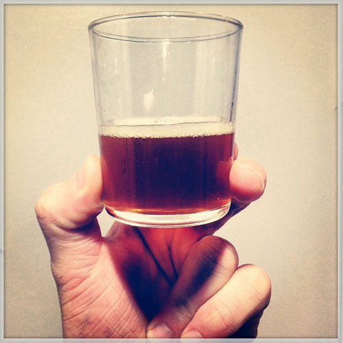 Hoppy Brewer_Save Money on Beer_Homebrewing for Beginners