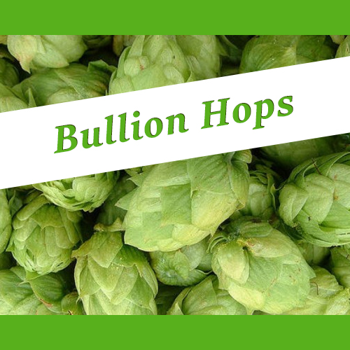 The_Hoppy_Brewer_Bullion_hops